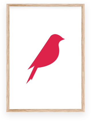 oiseau rouge equipe